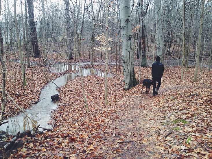 person and dog standing on dirt path near trees and brown leaves on ground photo