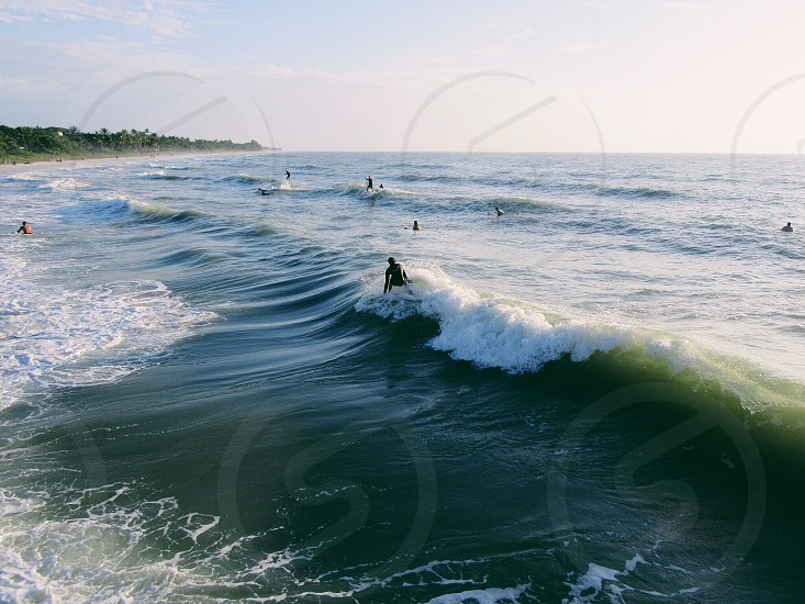 Wild surf photo