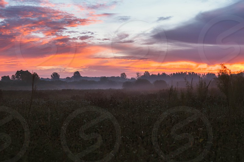 Foggy autumn Wisconsin sunrise. Wisconsin USA.  photo