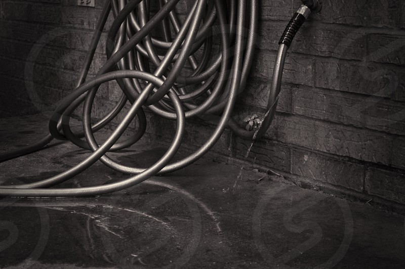 garden hose water leak brick wall puddle reflection summer seasons warm hot wet photo