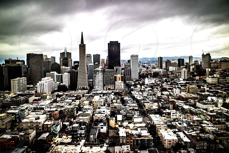 San Francisco Skyline Coit Tower photo