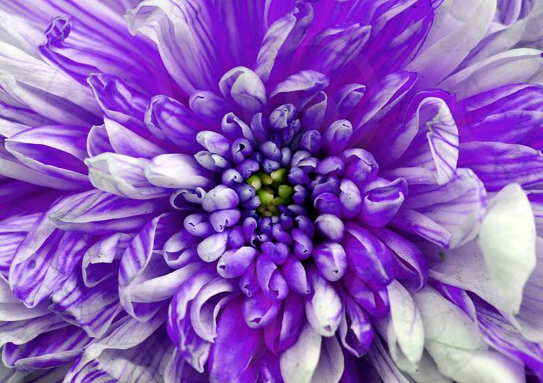 symmetric view photo
