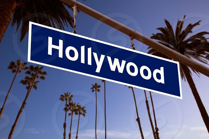 Hollywood redlight sign illustration over LA Palm trees background photo