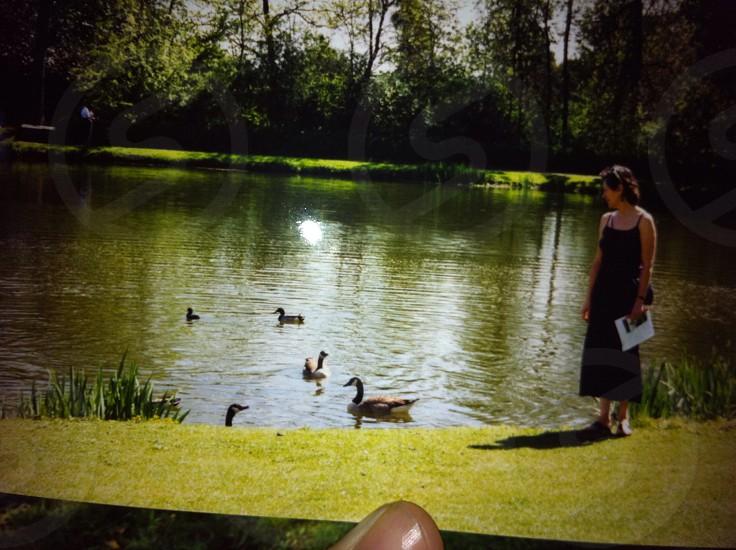 Duck lake photo