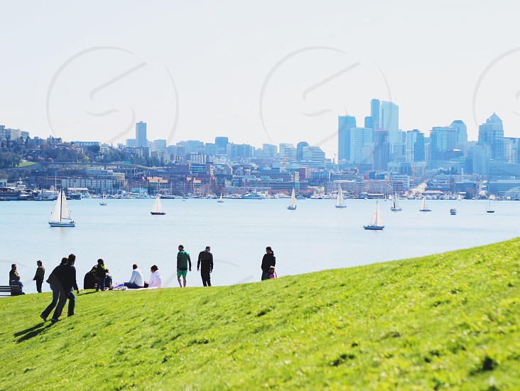 group of people sitting on grass watching sea view and city buildings  photo
