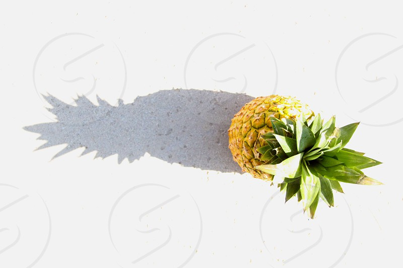 pineapple fruit on white surface with shadow photo