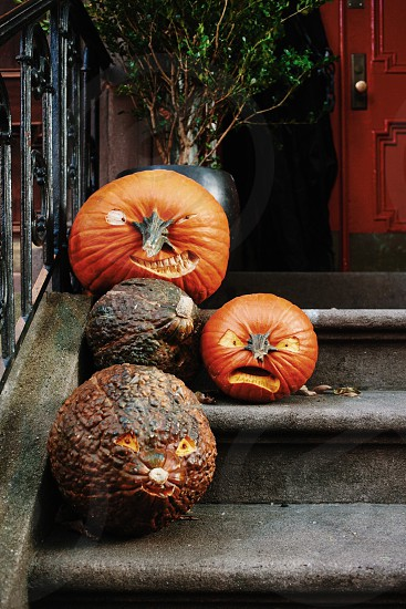 pumpkins on the stairs photo