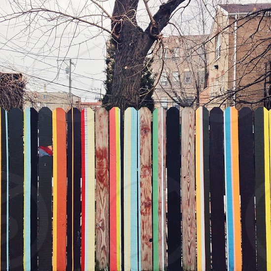 ||Striped Fence|| photo