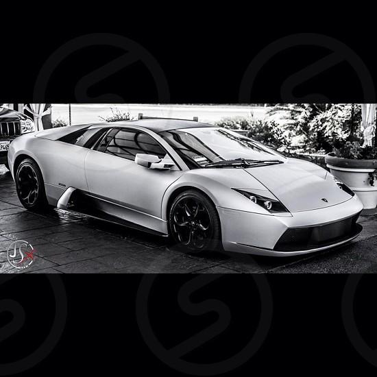 My shot of a Lamborghini Murcielago photo