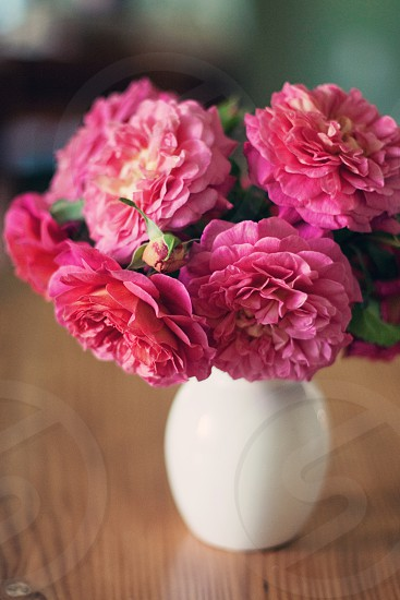 Roses flowers bouquet photo