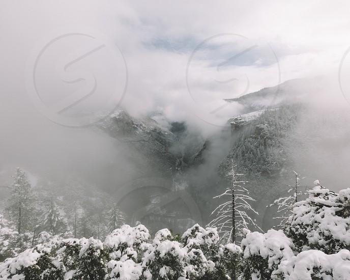 Yosemite National Park California winter winter wonderland snow trees photo