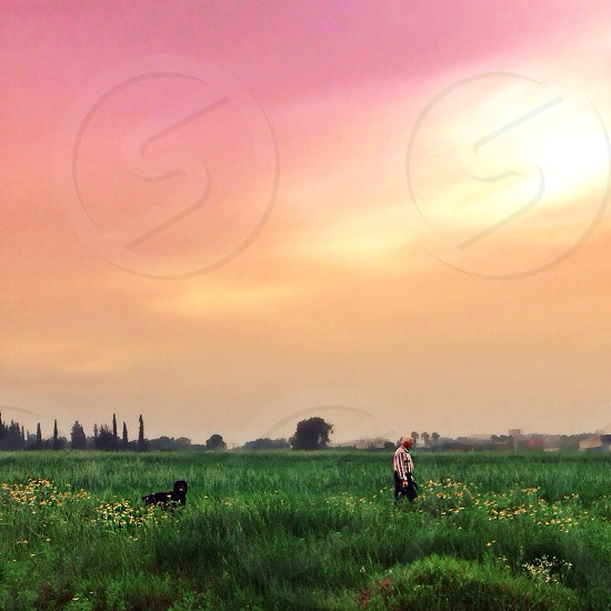 Pink and Orange Sky Over Grass Field photo