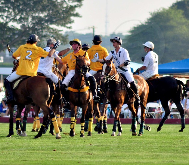 Polo players in yellow and white uniforms riding horse during daytime photo