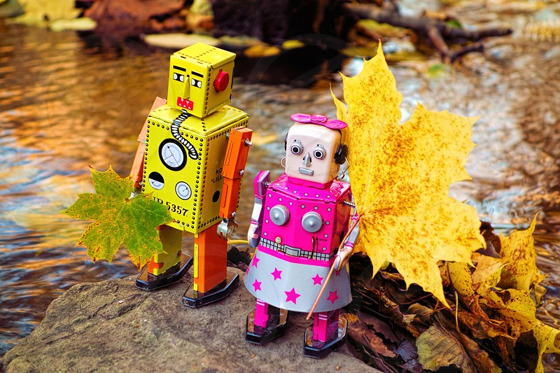 Two toy robot friends collecting autumn leaves by the river. photo