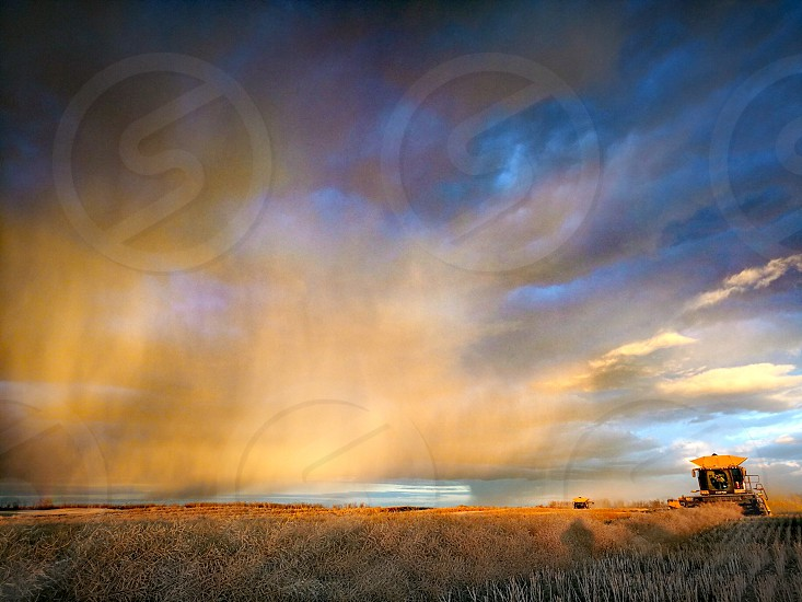Harvest colors at sunset as a rain shower passes through. photo