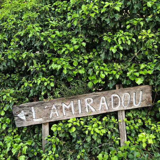lamiradou wooden road sign photo