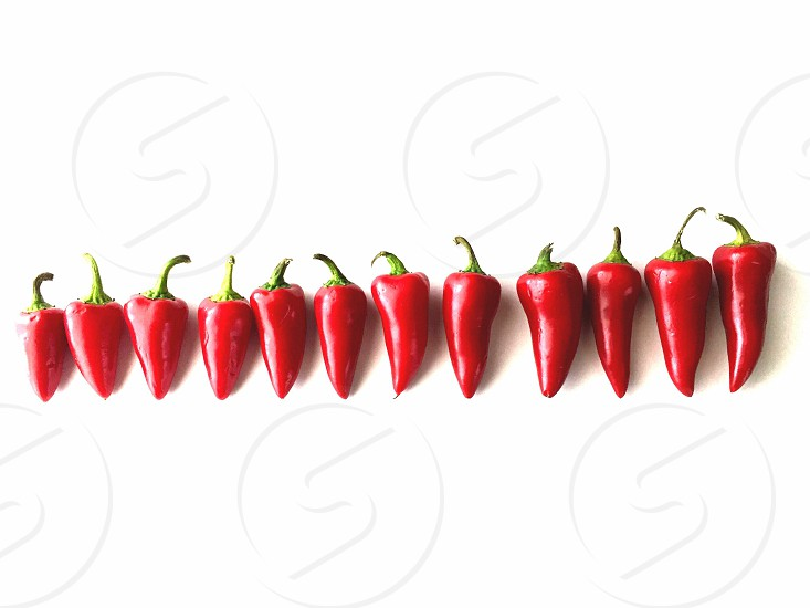 Red chili peppers arranged horizontally by size on a white surface photo