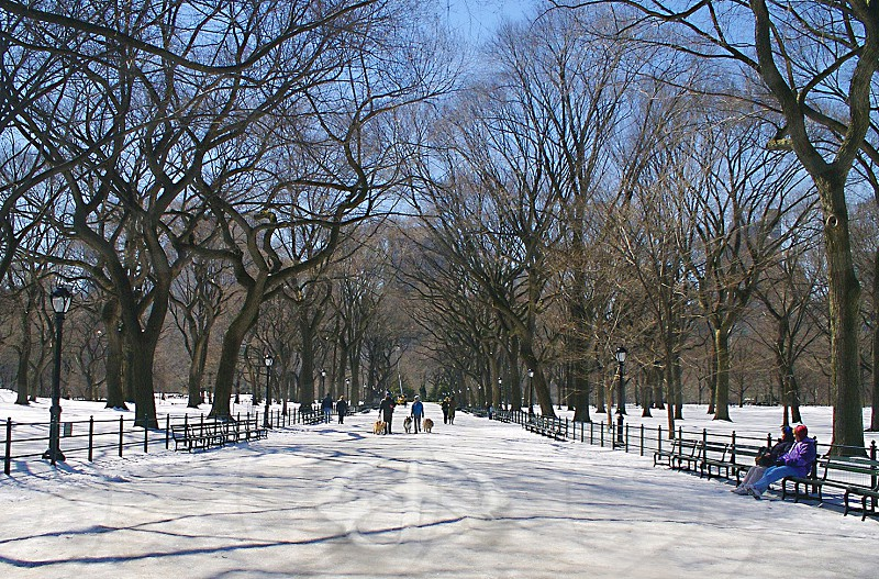 New York Central Park with peace sign carved in snow. photo