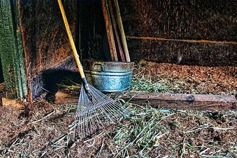 rake beside stainless steel bucket photo