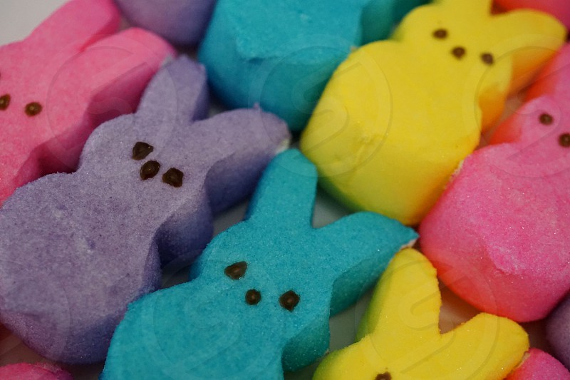 Easter Candy Peeps photo