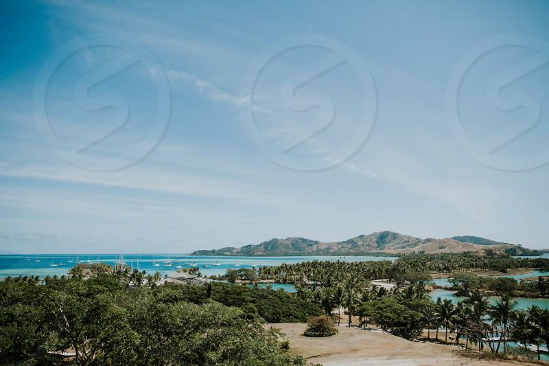 malolo island of the mamanuca islands group in fiji palmtree boat marina  photo