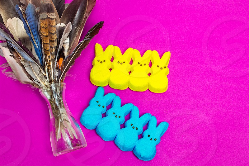 Easter spring peeps pink yellow rabbit marshmallows sweet snacks treat feathers  photo
