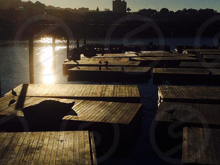 Pier 39 San Francisco California  photo