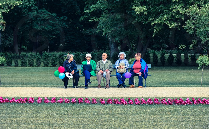5 person sitting on a bench on a park photo