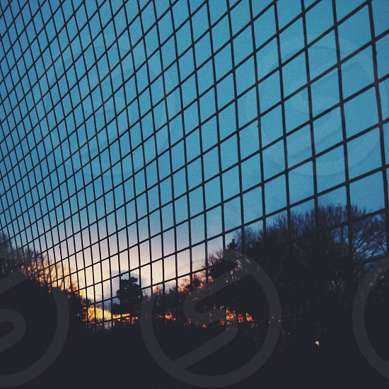 sunset fence grid lattice silhouette trees park photo