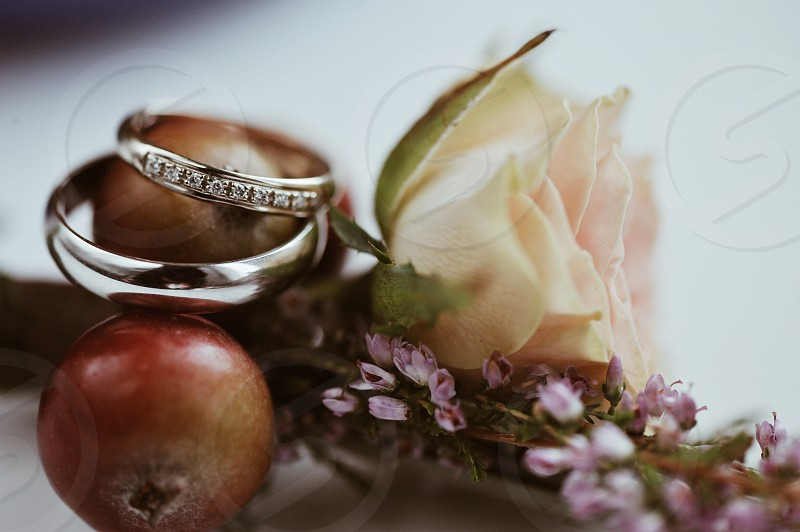 2 silver rings on brown round fruit near white flowers photo