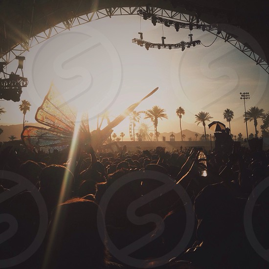 Coachella 2015 photo