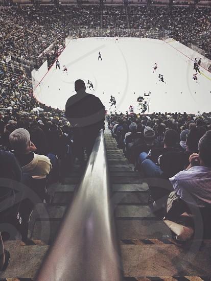 hockey rink photo