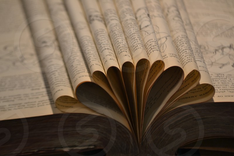 brown book page photo