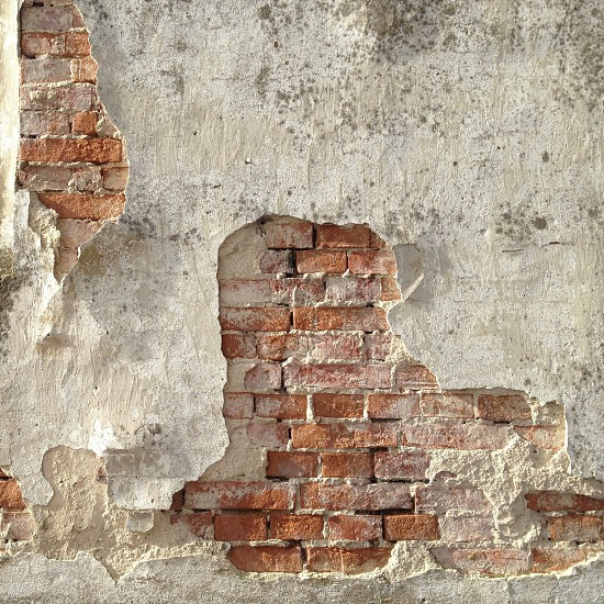 brown bricked wall photo