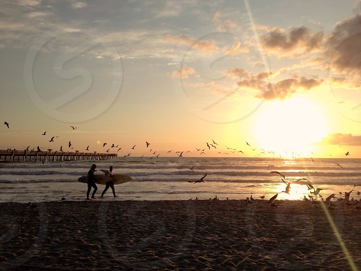 Jacksonville Fl. Atlantic Ocean  photo