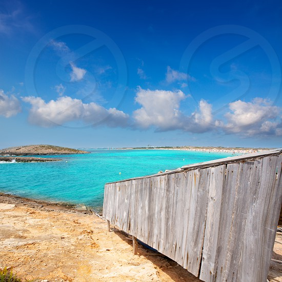 beach Illetas Illetes in Formentera near Ibiza with aqua water photo