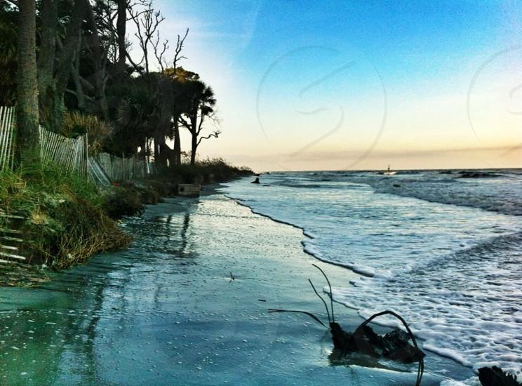 Hunting Island South Carolina.  photo