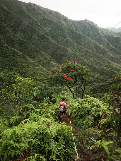 Women going down a mountain trail in Hawaii nature environment lifestyle hike outdoor photo