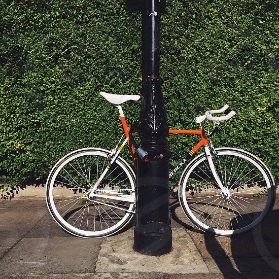 white and brown merckx road bike photo