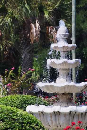 Fountain Garden Florida photo