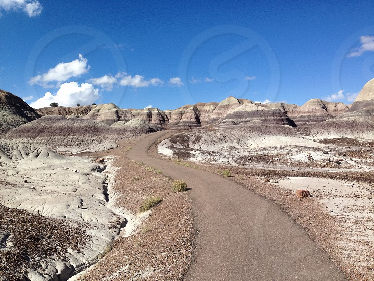 Open road USA Petrified Forest photo