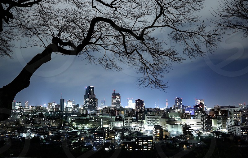 silhouette of city view photo photo