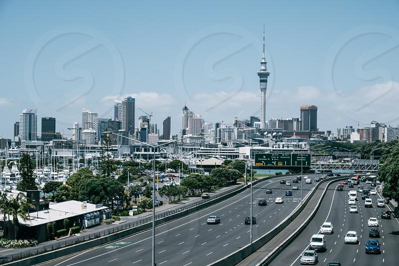 Skyline & Skytower in Auckland photo