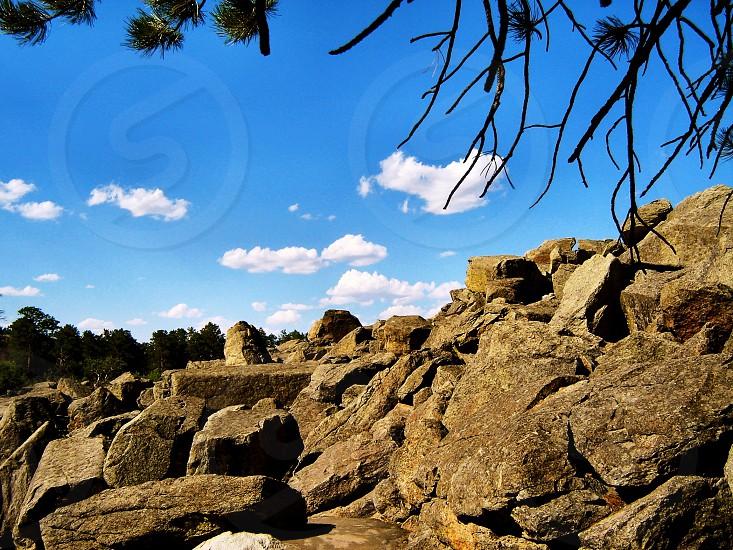 Rocks and Trees photo