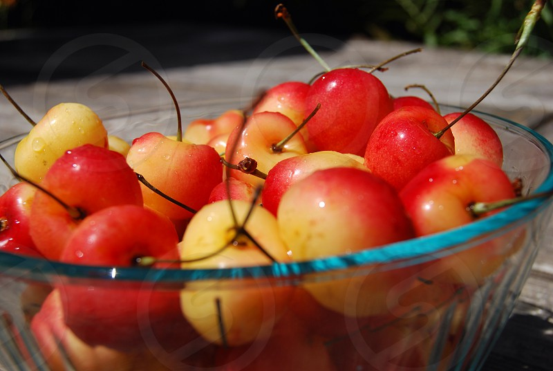 red and beige cherries photo