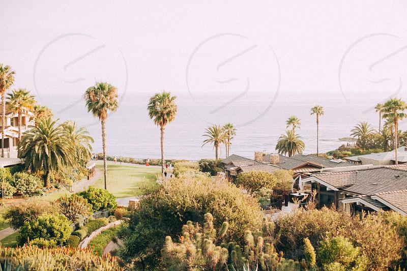 town by ocean photo