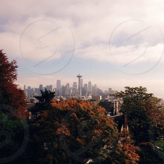 view of white painted buildings and space needle photo