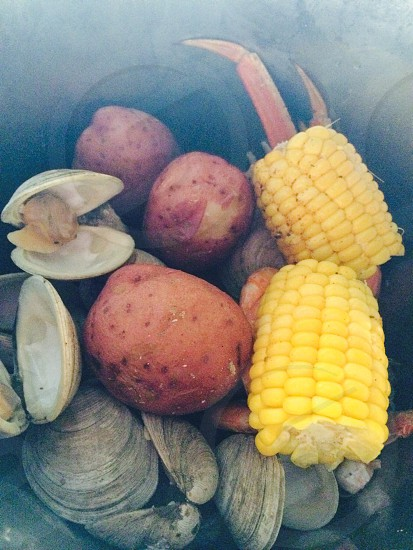 2 sliced corn with sea shells photo