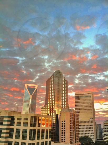 Good morning Charlotte  photo