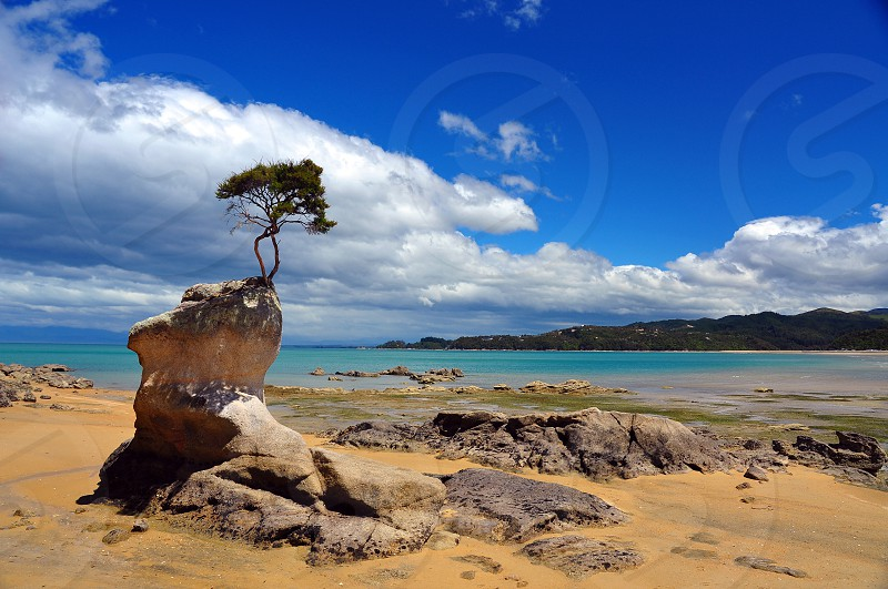 Abel Tasman National Park New Zealand photo